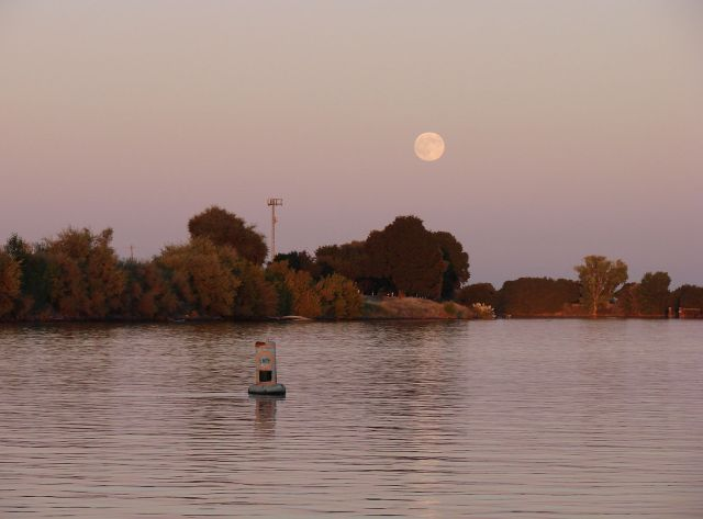 2011-10-11d-evening-on-old-sac-rising-moon