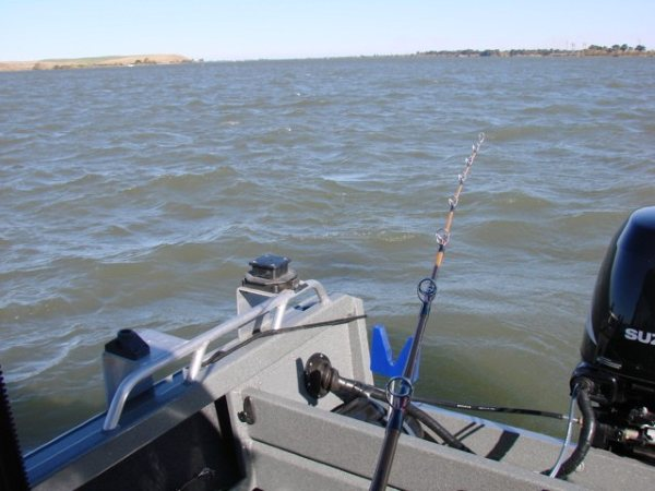 More 2009 Delta Sturgeon Fishing!