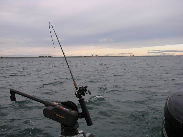 September 2010 camanche trout fishing fishwisher 39 s home page for Lake camanche fishing