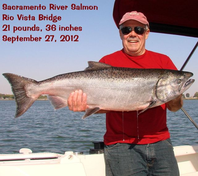 2012-9-27c Lb 36 inch salmon RV Bridge cap