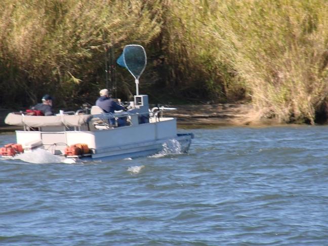 2010-11-15h mini pontoon boat