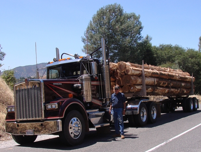 2011-7-14 Logging Truck on SR49