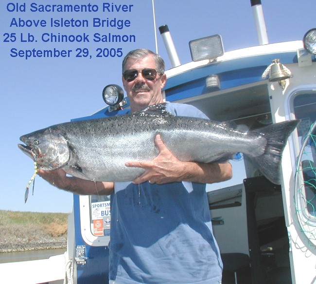 This is how salmon fishing was on the Sacramento Delta in years past ...