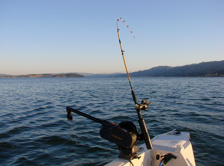 My first visit to lake berryessa fishwisher 39 s home page for Lake berryessa fishing