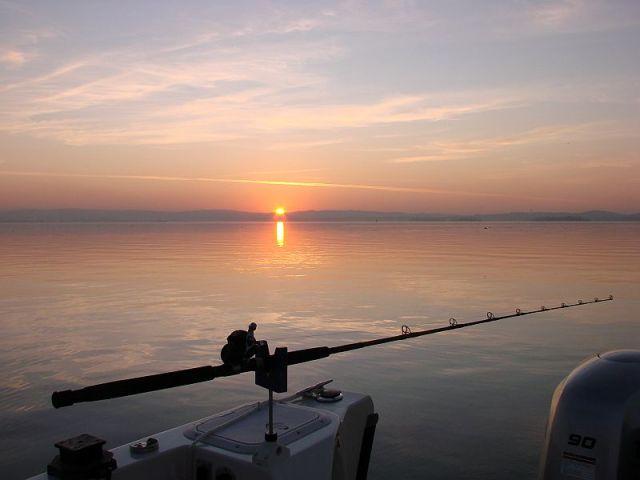 2011-12-6 Suisun sunset 1