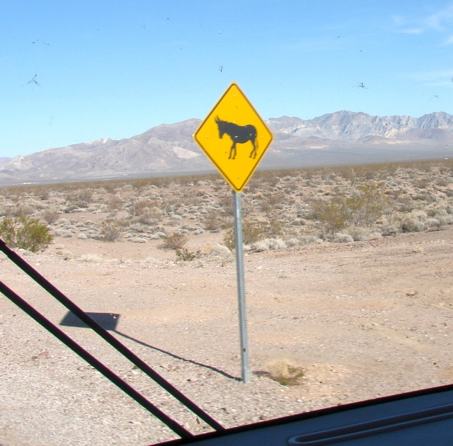 2014-2-21x wild burro warning