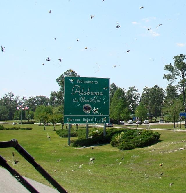 2014-5-18i welcome back to Alabama