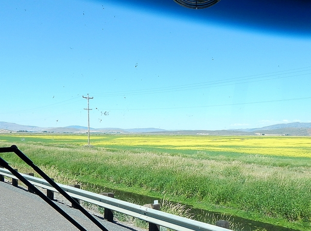 2014-7-7p US97 Oregon