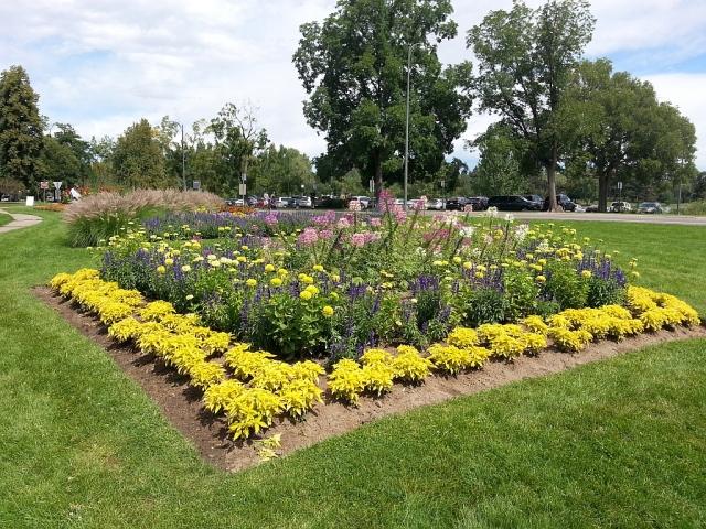 2014-8-31d park