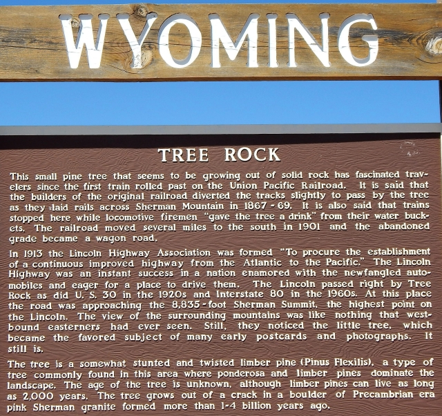 2014-9-2f Wyoming Tree Rock