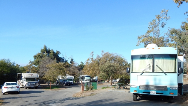 2014-11-15d portion of Guajome park RV area - lots of space between coaches.