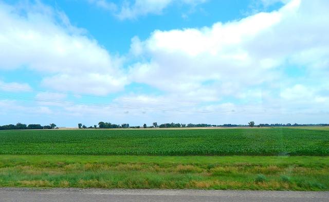 2015-6-16d Kansas corn