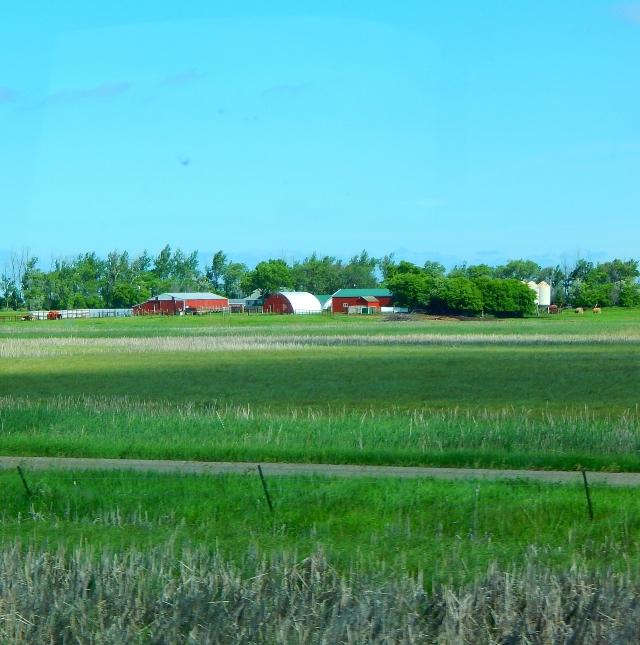 2015-6-19j picturesque ND farm