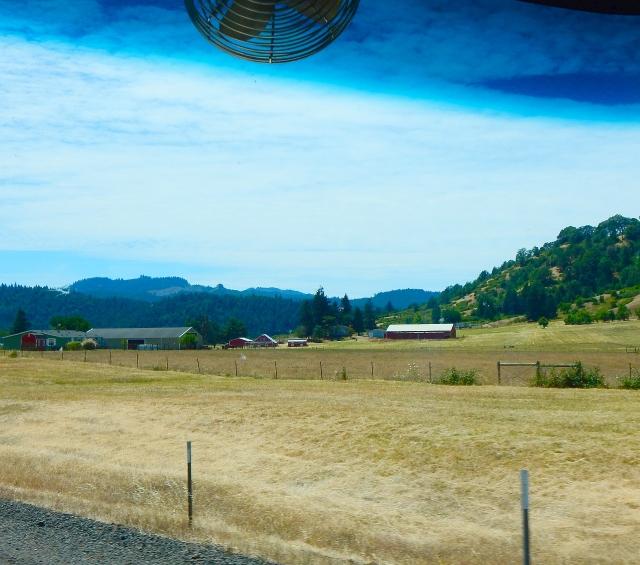 2015-6-23f summer brown Oregon
