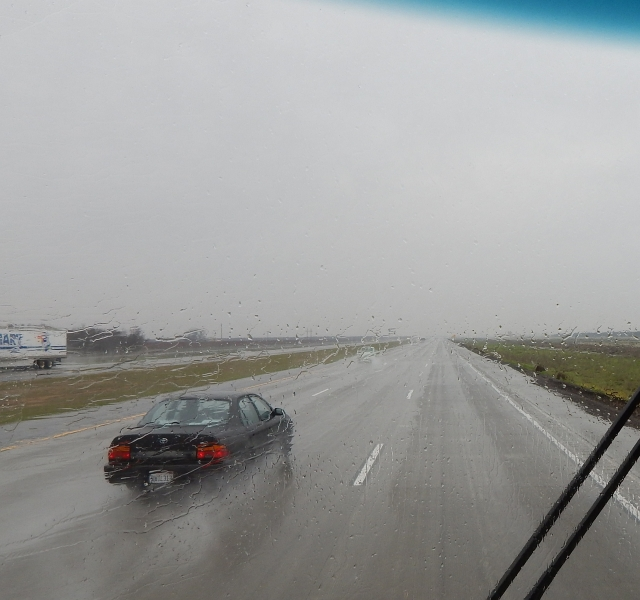 2016-1-4c Rainy 99