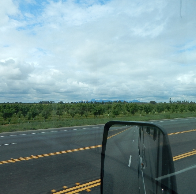 2016-4-10d Sutter Buttes from SR99