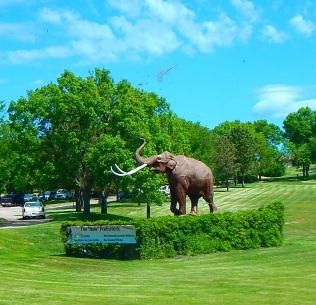 2016-6-3a mammoth
