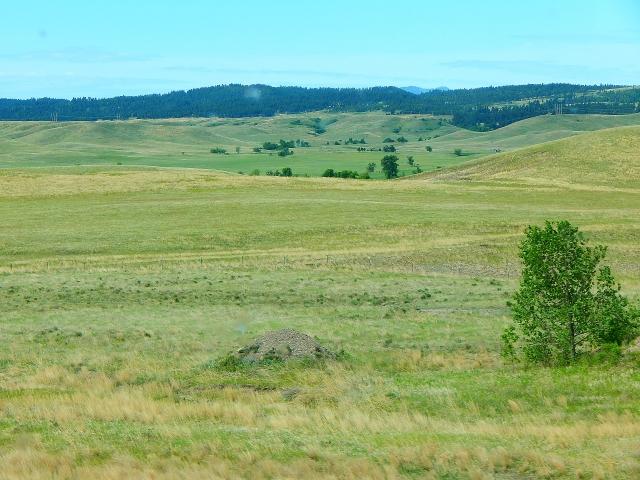 2016-6-3d SD landscape