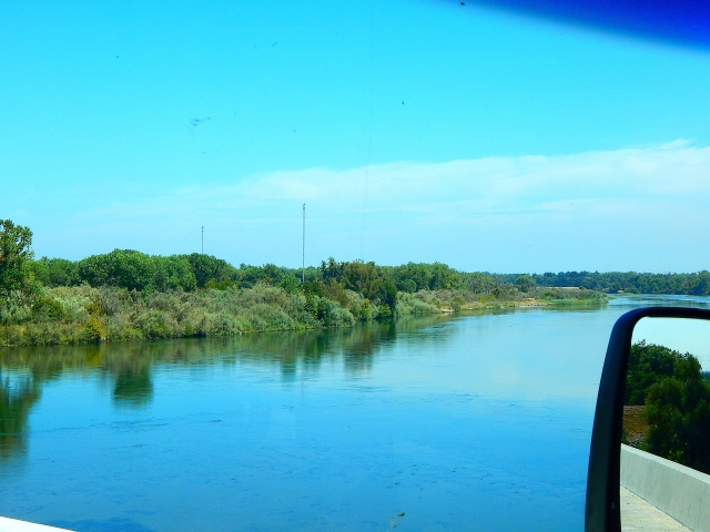 2016-8-29e Feather River along SR99
