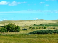 Montana was greener than Wyoming it seemed. Here the hay or grass has been bailed and ready.