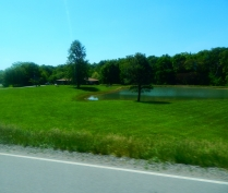 Someone's little piece of heaven tucked away in the farmlands of Illinois.