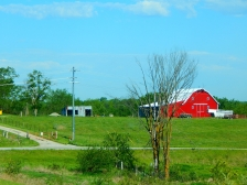 Just a pretty red barn that caught my eye - they always do.