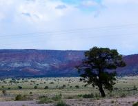 Beautiful New Mexico - I always enjoy driving through the scenic desert.