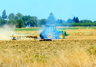 Farming the great Central Valley.