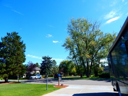 The kids' beautiful neighborhood.