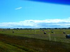 Colorado farming.