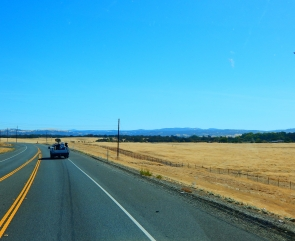 The drive as we approached the foothills is not a pretty one - dead weeds are abundant!