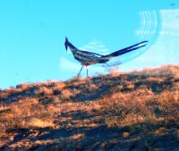 This very artsy road runner is part of a rest area that overlooks the city below.