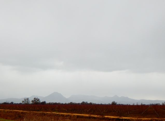 The Sutter Buttes on a rainy day.
