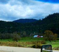 A lovely spread along I-5 in Oregon.