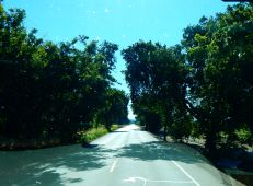 A country lane en route to CA70.