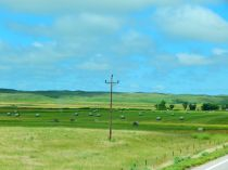 I seem to be developing a thing for hay fields; this is more of Nebraska.