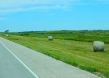 Something new to me: ditch hay. Yep - cut and baled on public highways and depending on the state, it is used by either public or private entities.