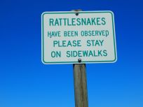 ...and who keeps 'em off the sidewalks?!
