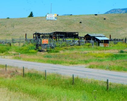 What is it about this broken down old corral, etc. that demanded my attention? It certainly had character.