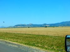 Along the very dry I-5