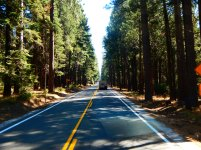 We enjoyed the beautiful drive through the Sierras.