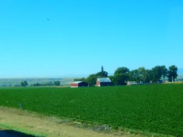 ...and a lovely Colorado Farm.
