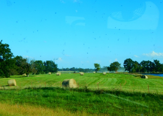 Yet another pretty hay field.