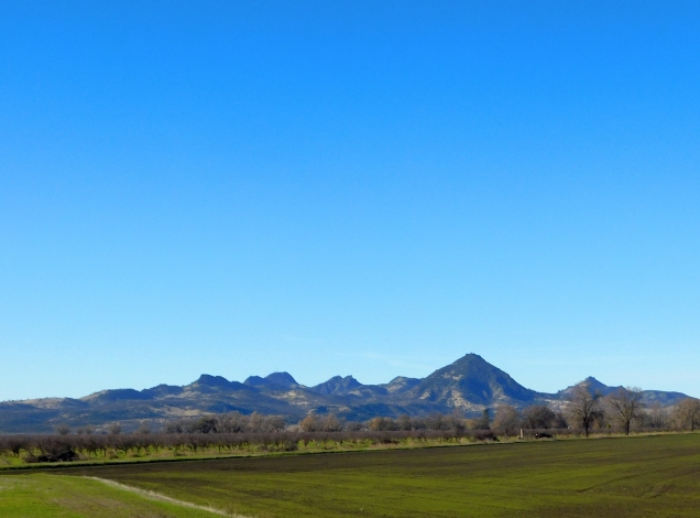 The Sutter Buttes up close and personal. This is the smallest mountain range on the planet!