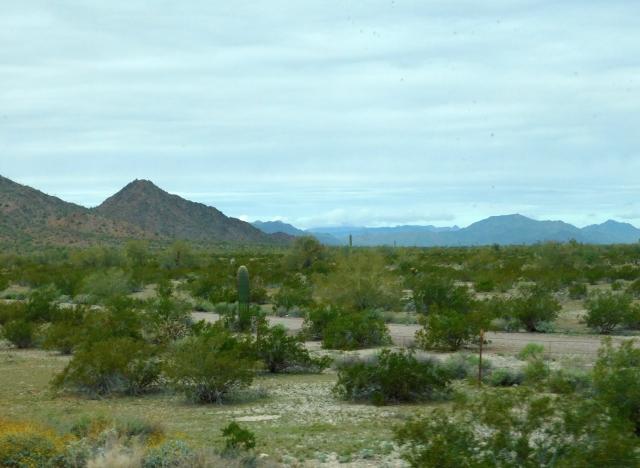 2019-2-3e Sonoran Desert Natl Monument