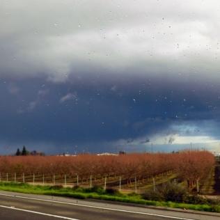 The sky darkened...