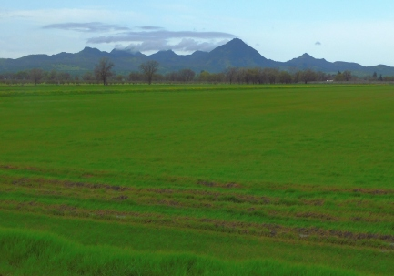 Sutter Buttes looking as beautiful as they get.
