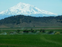 Imagine owning a ranch in the shadow of Mt. Shasta...