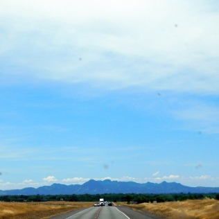 A very nice view of the Sutter Buttes as we drove toward Gridley on CA20.