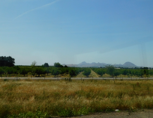 The beautiful Sutter Buttes, the planet's smallest mountain range.